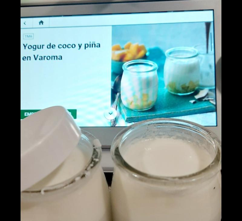 YOGURT DE COCO Y PIÑA