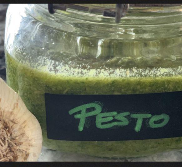 Salsa Pesto con Thermomix®